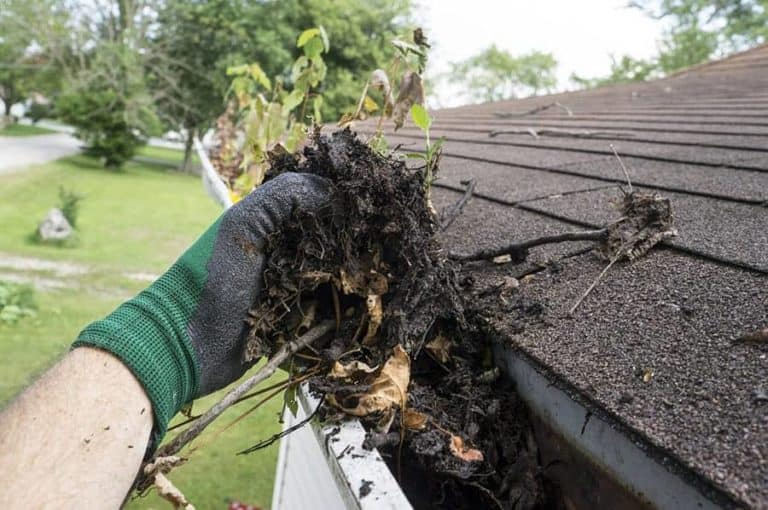 Cleaning Gutters in Williamsville, NY when they are filled with leaves